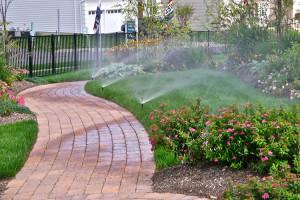 cape town irrigation